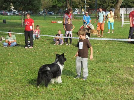 Oploteny vybeh pre psov