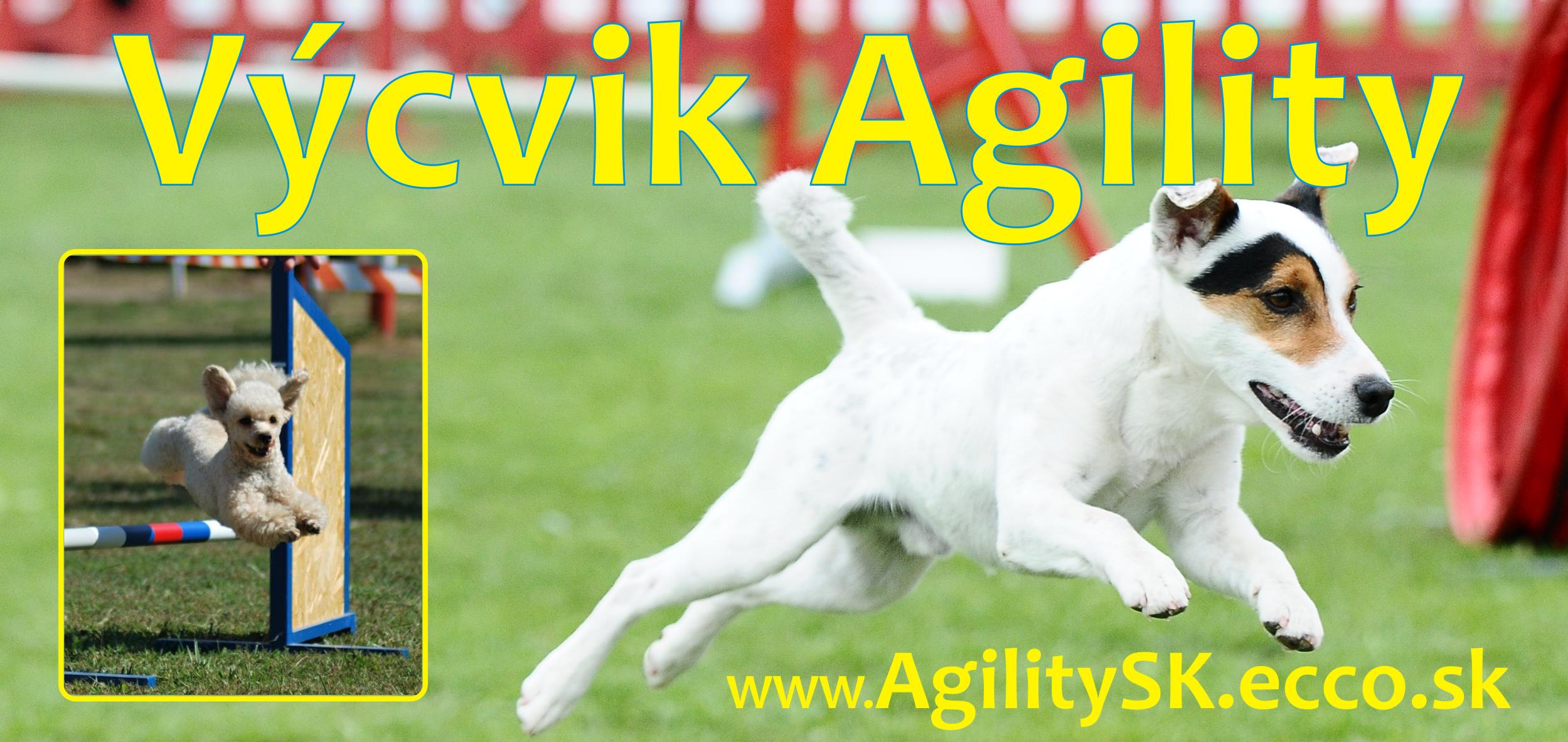 Aglity_web